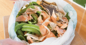 Food Waste in Plastic Bag - HRS