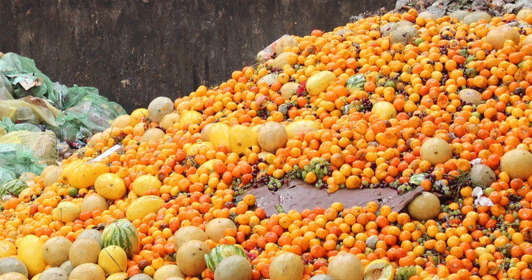 Food Waste - HRS Tips for Food Factories