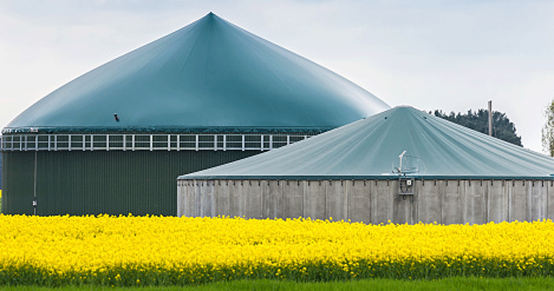 Biogas - Heat Exchangers for Anaerobic Digestion Process
